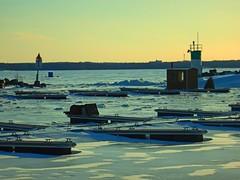 frozen CVGR iced Aylmer marina Qc CDA DSCN2439 (dodochampo) Tags: ice frozen fishing huts lighthouse lake deschenes snow docks winter hiver neige glace lac