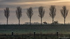 An early ride across the dike (BraCom (Bram)) Tags: 169 bracom bramvanbroekhoven dirksland goereeoverflakkee holland nederland netherlands oosthavendijk paard sas bomen boom cloud dijk dike fog landscape landschap meadow mist morning ochtend palen polder poles ruiter silhouetten silhouettes sky tree trees weide widescreen winter wolk nl southholland zuidholland