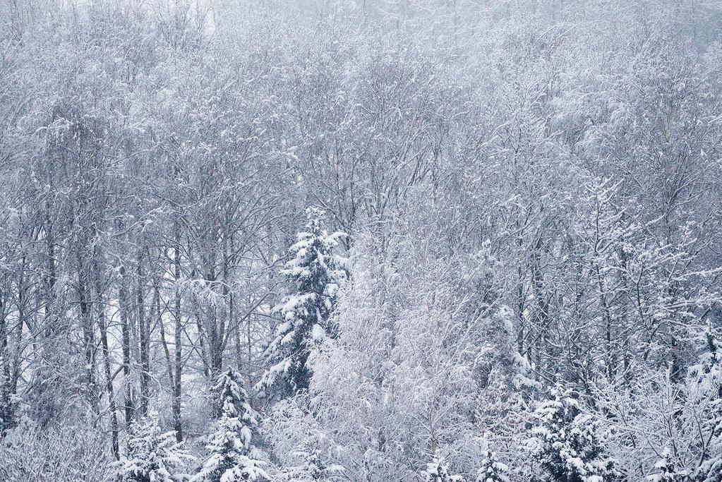 фото: Russian winter