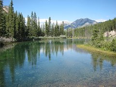 Think Spring ..... (Mr. Happy Face - Peace :)) Tags: art2018 albertabound cans2s scenery landscape rockies banff canmore alberta canada parks lakes glacier waters trees wilderness hss nature hiking 7dwf theme