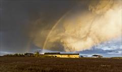 Cadeau de dame nature ! 17:02 pm (Sugarth Photo) Tags: nuages arcenciel rainbow clouds countryside farm campagne nikond500 nikkor1424mmf28 paysage loircher 41 france landscape ferme fabuleuse