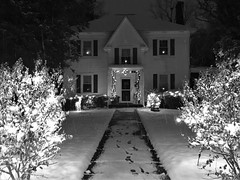 light up the night (karma (Karen)) Tags: baltimore maryland home frontyard christmaslights snow smileonsaturday lightopia bw monochrome hsos topf25 cmwd