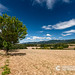 Beautiful+summery+views+over+the+hilly+landscape+of+the+Drome+in+France.