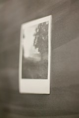 Didascalies by Jean-Philippe Roubaud (soleneelle) Tags: exhibition arty arts art south artist drawing nature culture romantic wood polaroid picture black white
