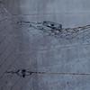 Grau hinter Zaun (zeh.hah.es.) Tags: zurich zürich kreis5 schweiz switzerland zaun fence gitter grid grau grey gray dof