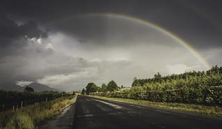 Follow the rainbows!