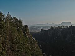 Talblick (lebastian) Tags: panasonic dmcgx8 olympus m1240mm f28 saxony sächsische schweiz mountain berg felsen sachsen landschaft baum gras