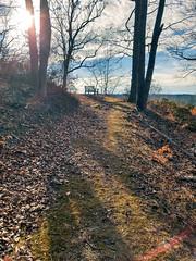 Afternoon Hike (laurenspies) Tags: potomac montgomerycounty maryland usa northamerica eastcoast midatlantic unitedstates us md hike trail bench path