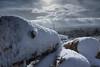 Corrin-1-3 (CassidyCaptures) Tags: winter ireland snow forest exposure gloomy grim dark contrast woods countryside corrin hill mountain irish eire trees spring alone walking creepy sky fauna walk walkway path journey