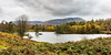 Tarn Hows and Coniston Fells (Keith in Exeter) Tags: tarnhows tarn lake water panorama landscape picturesque serene tranquil park lakedistrict nationalpark nationaltrust cumbria mountain sky cloud tree forest woodland bracken field grass island autumn