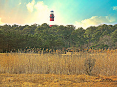 059(1) Assateague Island, VA (baypeep) Tags: lighthouse