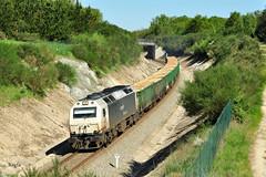 Corgo (REGFA251013) Tags: tren train renfe adif galicia madera comboio lugo monforte de lemos coruña