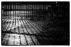 behind bars (TheOtherPerspective78) Tags: blackandwhite black white night nightshot vienna shoadow light bars iron wroughtiron tarmac asphalt wet rain sidewalk fence cage minimal urban theotherperspective78 canon eosm6