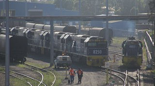 8250 8240 8214 and 8243 are about to get a fresh crew to run an empty PN coal train