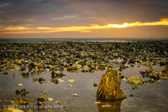 Sunrise on a Stony Beach (Neil Clark) Tags: earlymorning greatbritain pentaxa35105f35 sonynex6 westsussex worthing beach shingle legacylens