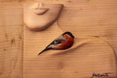 L'oiseau (the bird) (Larch) Tags: wood bird sculpture ligne line pureté femme woman poésie poetry crafts artisanat art beauté beauty purity aoste foiredelasaintours saintours stours italie italy