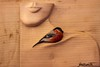 L'oiseau (the bird) (Larch) Tags: wood bird sculpture ligne line pureté femme woman poésie poetry crafts artisanat art beauté beauty purity aoste foiredelasaintours saintours stours italie italy