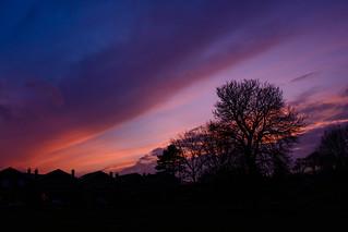 February dusk#2
