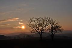Frostiger Morgen - Wenn die Sonne erwacht (Uli He - Fotofee) Tags: ulrike ulrikehe uli ulihe hergerthergertburghaunplätzermorgensonnefrüher morgenfrostiger morgen morgenfrost kalt kälte winter februar 5°c morgensonne morgenlicht
