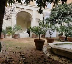 Hidden Garden (StayFocused2) Tags: garden statue rock fountain