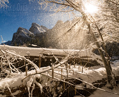 Snow Shower (mikeSF_) Tags: california yosemite brothers snow winter landscape mikeoria pentax 35mm yosemitenationalpark ynp capitan elcapitan halfdome trees forest valley yosemitevalley dome mercedriver pentax645z photography 645z mikeoriaphotography wwwmikeoriacom park