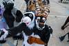 DSC02216 (Kory / Leo Nardo) Tags: fur furry fursuit fursuiting costume cosplay animal fursona space camp party alameda faction brewing 12118 pupleo thebayareafurries