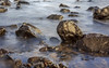 "On the Rocks. (Ian Emerson ""I'm Back"") Tags: rocks seascape sea water longexposure canon hoya wet shiny"