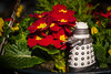 new paradigm dalek (Mark Rigler -) Tags: new paradigm dalek doctor dr who bbc red yellow