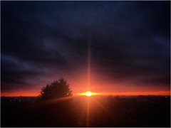 Light on the horizon (andystones64) Tags: tree nlincs lincolnshire scunthorpe sundown sunset sunlight sunlit sun gap horizon nature weather sky cloud