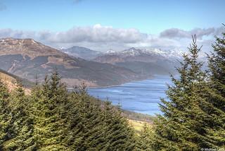 Loch Long and the Arrochar Alps; Strone Hill, Argyll, Scotland