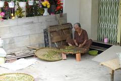 DSC03142 (Tom Evensen) Tags: vietnam