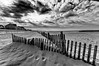 """Les """"Girondines"""" de Chatelaillon (Fabrice Denis Photography) Tags: seascapephotography france chatelaillonplage bwphotography charentemaritime coastalphotography girondine seascapes sea nouvelleaquitaine monochromephotography beachphotography beach ocean monochrome blackandwhitephotos plage coastal oceanphotography blackandwhite noiretblanc seascapephotographer blackandwhitephotographer seascapephotos blackandwhitephotography châtelaillonplage fr"""