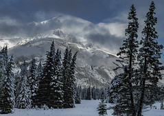 Passing storm (Robert R Grove 2) Tags: storm clouds winter snow weather trees mountains banff canada alberta robertrgrove landscape season