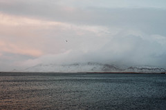 Reykjavik, Iceland (Chris Kreymborg) Tags: travel wanderlust hiking roadtrip adventure nature mountains winter snow clouds sea iceland reykjavic landscape sony sonyalpha sonya7ii alpha7ii a7ii minolta rokkor 50mm rokkor50