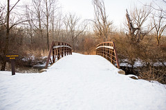 Life in Winter (Lauren Delgado) Tags: winter akron ohio wintertime life firestone metro park metropark golden hour landscape photography canon 6d snow cold ice sunset hiking trails explore discover summit county bridge