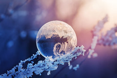 Winter wonder | Explored 2018.01.14 | Thank you all! (Pásztor András) Tags: nature frozen cold freezing bubble soap bokeh dof winter mood moody snow sunset crystal water sigma 105mm macro detailed ice flower dslr nikon d5100 hungary andras pasztor photography 2017