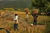 IMG_0461 (Kalina1966) Tags: bali island indonesia people rice field