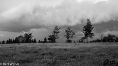 Unbenannt (weber.bert) Tags: kahlerasten wanderungen 169 analogefotografie blackwhite inbiancoenero noiretblanc grauwertabstufungen sw