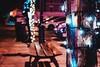(frogghyyy) Tags: outdoor luci light lights dof bokeh dettagli details macro