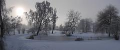Winter wonderland (s/n/k) Tags: 2018 bergianska winter garden water landscape panorama gf7 panasonic