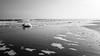 Foam (albi_tai) Tags: mare rimini romagna inverno spiaggia schiuma foam albitai albimont samsung s7 figofono neltunneldelbn bianco nero bianconero biancoenero bn bw blackwhite black white