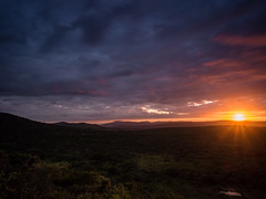 Here comes the Sun...! (davYd&s4rah) Tags: sunrise colours colors sun hluhluwe kwazulunatal southafrica südafrika 2018 clouds wolken view amazing yellowish waterhole wasserloch morning mist mountains olympus em10markii m1240mm f28 olympusm1240mmf28 sparkles sky