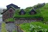 °Leynar 2 (J.Legov) Tags: gras nebel leynar streymoy färöer inseln færøerne jlegov