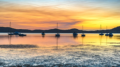 Dawn Waterscape over the Bay with Boats (Merrillie) Tags: australia bay boats brisbanewater centralcoast clouds cloudy coastal dawn daybreak earlymorning foreshore koolewong landscape morning nature newsouthwales nsw outdoors overcast sky sunrise tascott water waterscape