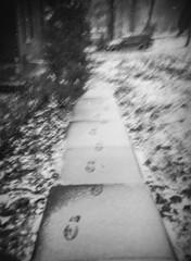 leaving home (RubyT (I come here for cameradarie)) Tags: ultrafine100 debonair film analog mono monocromo monochrome bw nb bn noirblanc blancoynegro schwarzweiss blackandwhite sidewalk footprints sleet winter cold черноеибелое mf toycamera