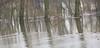 Hoogwater 2018 6 (megegj)) Tags: gert river flood