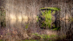Cassy - the fisherman's house (Fred LP) Tags: nature woodlan lake lac fish fisch fischerman art sun sunrays lanton nouvelleaquitaine france fr