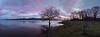 Azua (joseba71) Tags: ullibarri paisaje panorama pais panoramica pantano landscape uribarri uribarrigamboa euskadi fuji alava araba arbol amanecer aire azua azul magenta naturaleza nature xt2 sunrise