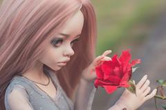Dakota and rose (Ilweranta) Tags: doll dim dimdoll dollinmind dimlarina larina hybrid bjd abjd bjddoll msd balljointeddoll