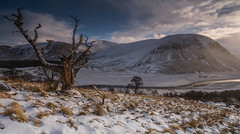 A StrathDearn View. (Gordie Broon.) Tags: strathdearn winter glen lonetree landscape landschaft scenic schottland scottishhighlands scotland scenery ecosse escocia riverfindhorn treeskeleton snow hillside hills mountains heuvels collines coignafearn tomatin view rio abhainn gordiebroonphotography february 2018 light gnarly colinas cold szkocja scozia caledonia alba aghaidhealtachd paysage paisaje kullar eveninglight hugeln sonya7rmkii ilce7rm2 sonyzeiss1635f4lens geotagged coignashie monadhliathmountains clouds